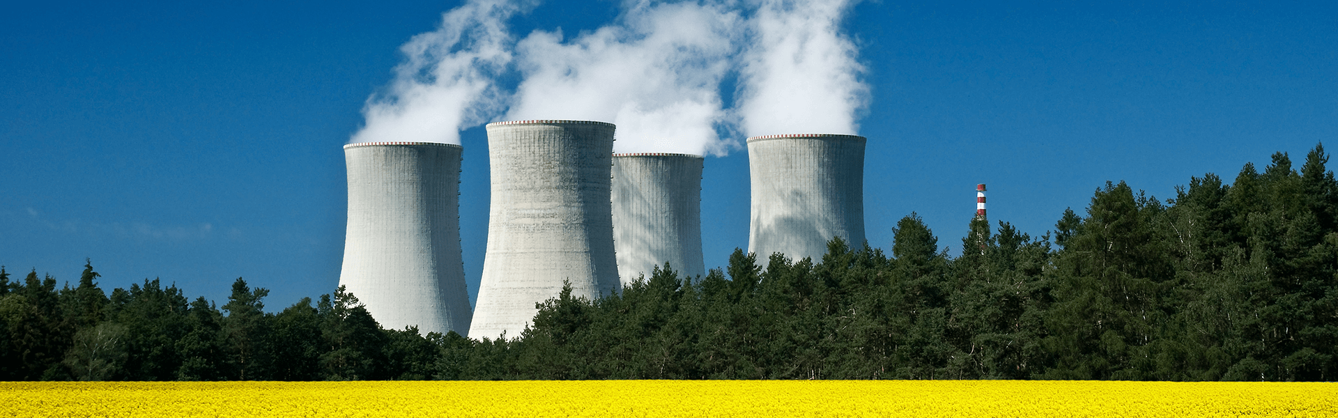 an overview of the nuclear power technology in the world Nuclear power technology certificate  human performance for nuclear power plant  nuclear power plants as well as new reactors to be built around the world.