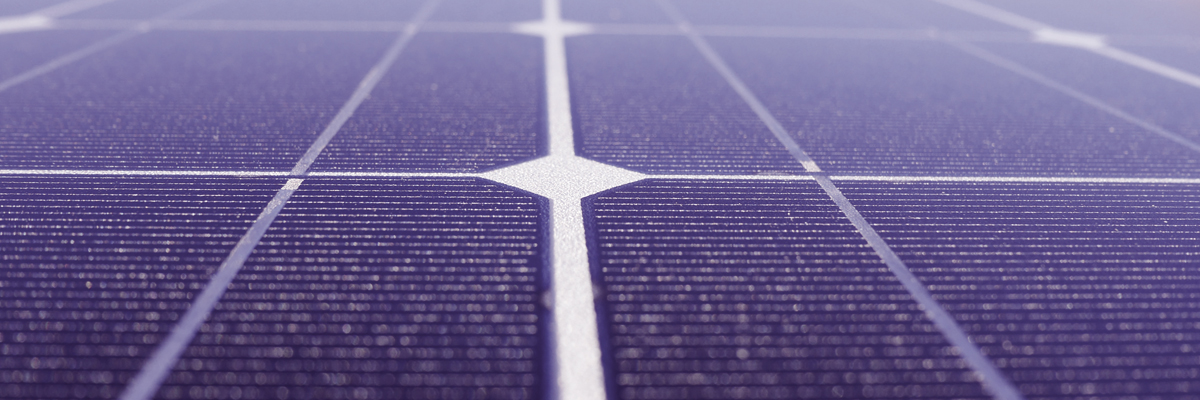 Purple solar panels