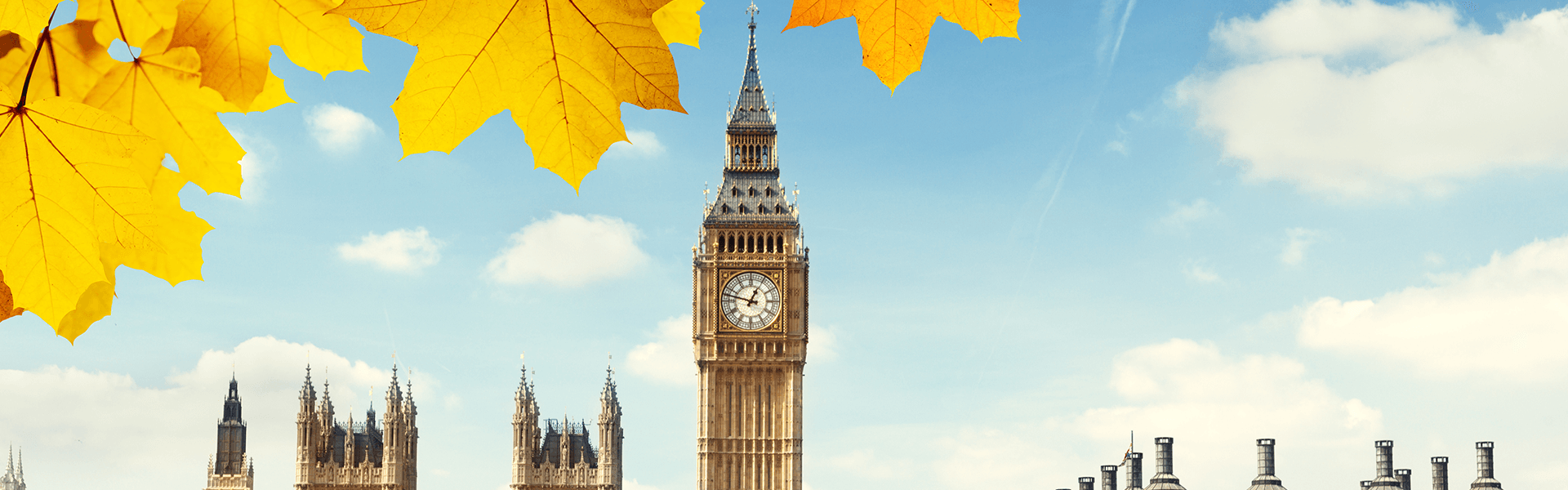 Autumn leaves framing the Houses of Parliament and Big Ben